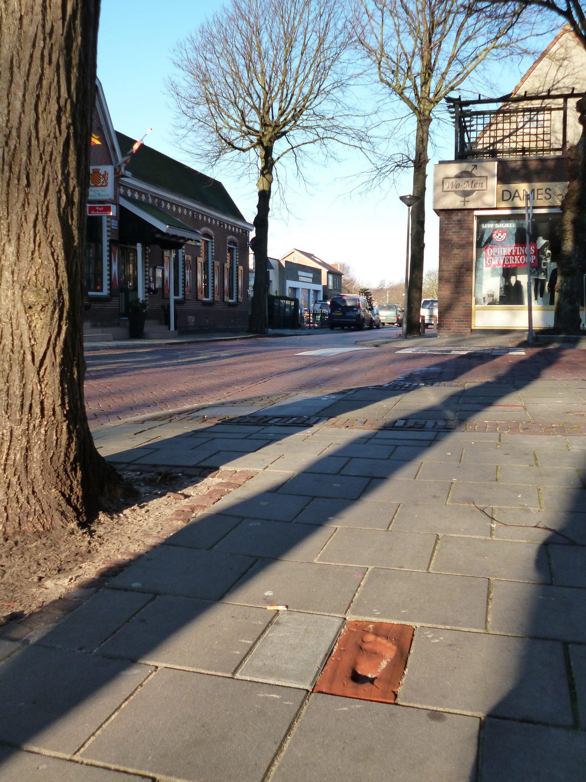 Kloostermoppen ter plaatse van de Sint Adelbertusweg te Egmond-Binnen